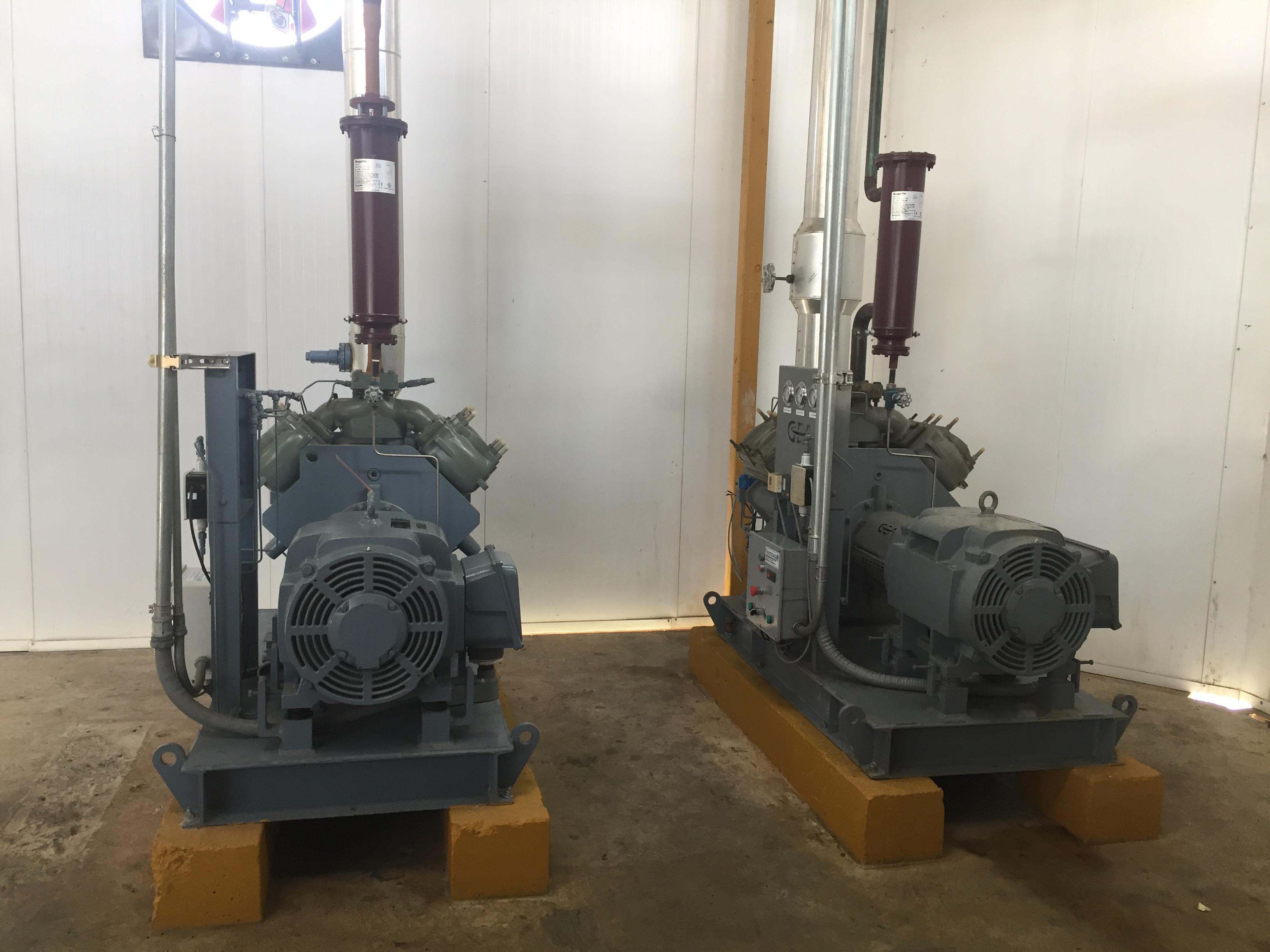 Gea compressor. Refrigeration equipment for poultry